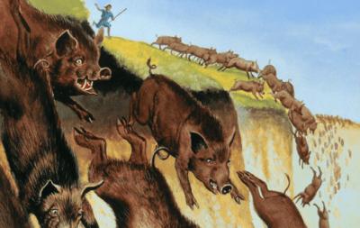 史上最详尽加州打野猪攻略