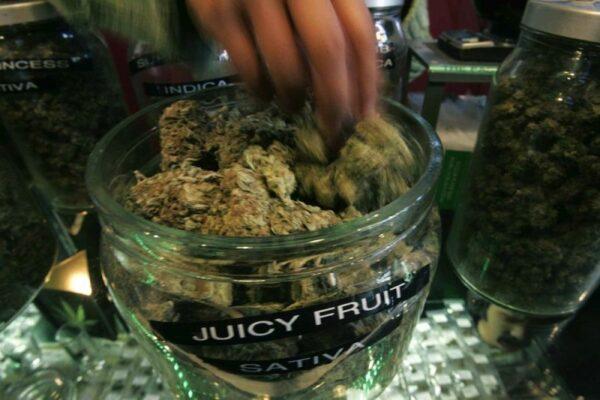 罐上贴着不同「口味」的大麻名称
